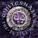ws - purple 1
