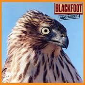 blackfoot marauder
