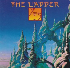 yes ladder cover